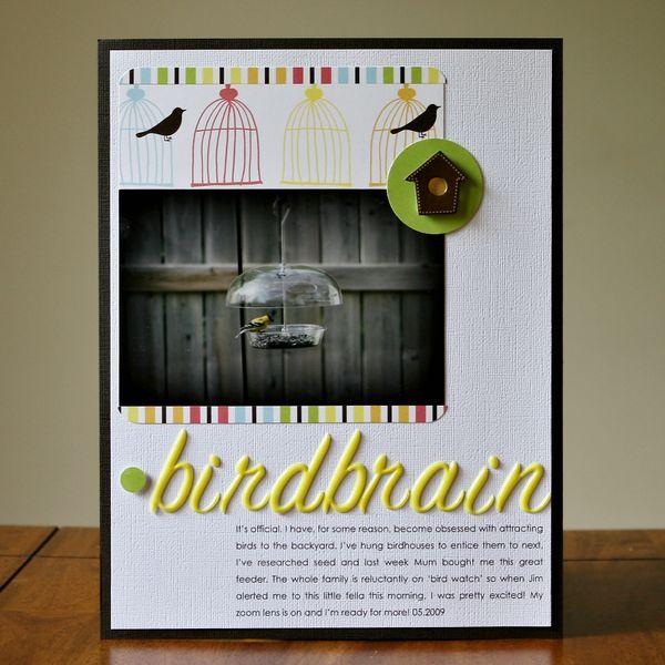 Birdbrain