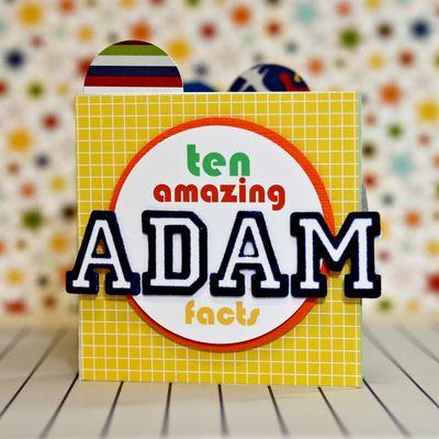 Adam mini 1