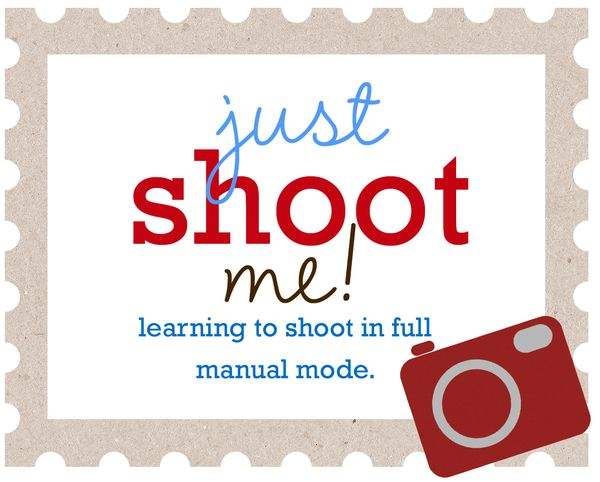 Just shoot me logo