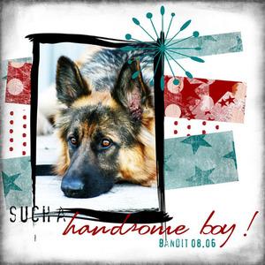 Handsome_boy1
